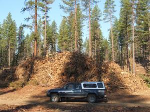 EXF logging