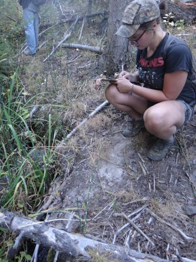 Mesa documenting cattle damage to a seep in one of the four Ochoco grazing allotments.